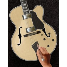 Halo Custom Guitars - Archtop Guitars Customization Tool
