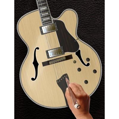 Halo Custom Guitars, Custom Basses, Custom Shop & Build-to-Order