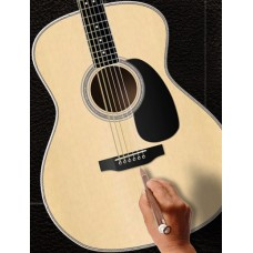 Halo Custom Guitars - Acoustic Guitars Customization Tool